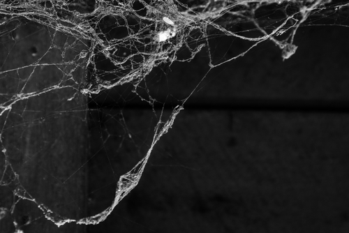 Recognition Programs: Cobwebs Can Be Cleaned